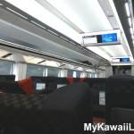 Narita Express Train