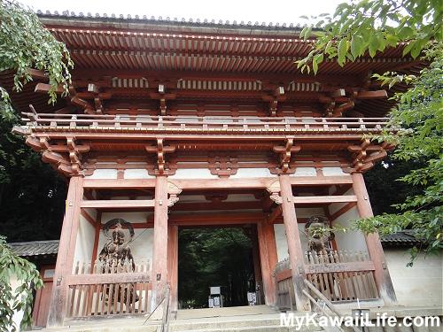 Daigoji Temple Niomin Gate