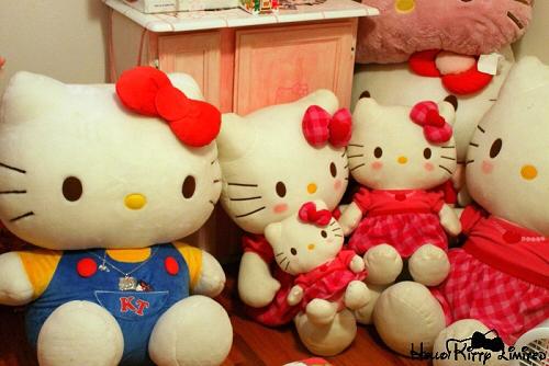 Sheena's Hello Kitty Plush Collection